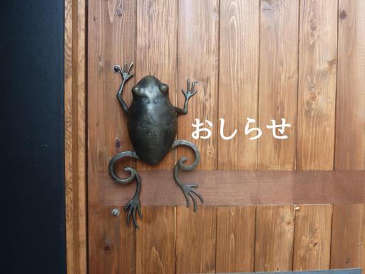 bluefrog012